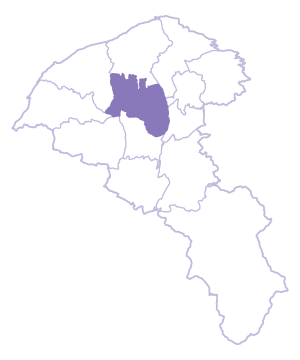 Zhongli Dist. location map